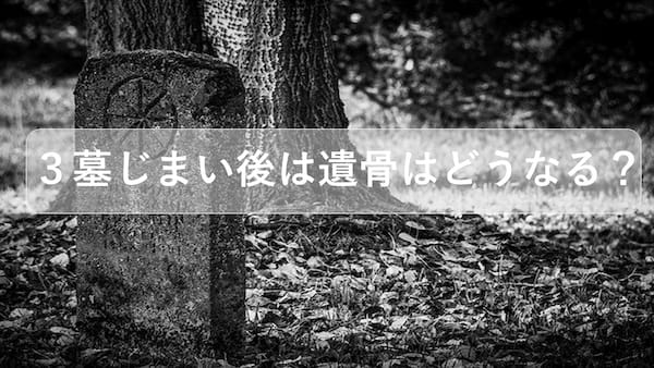 墓じまい後は遺骨はどうなる?