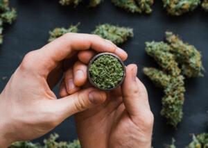 初犯の大麻所持の刑期について
